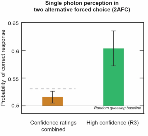 Probability of providing the correct response in 2AFC trials for all (brown) and high confidence responses (green). The horizontal dashed line indicates the upper theoretical limit of performance of an ideal detector operating at a physiological parameter of detection efficiency in the absence of additional noise